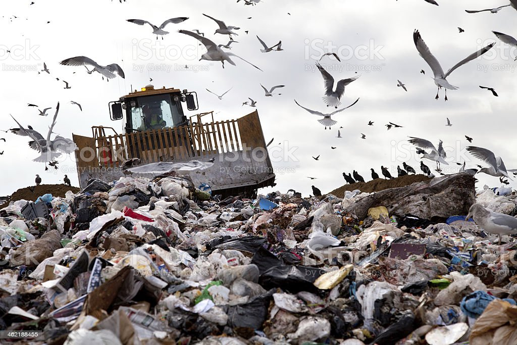 Disgusting heaping landfill crawling with birds stock photo