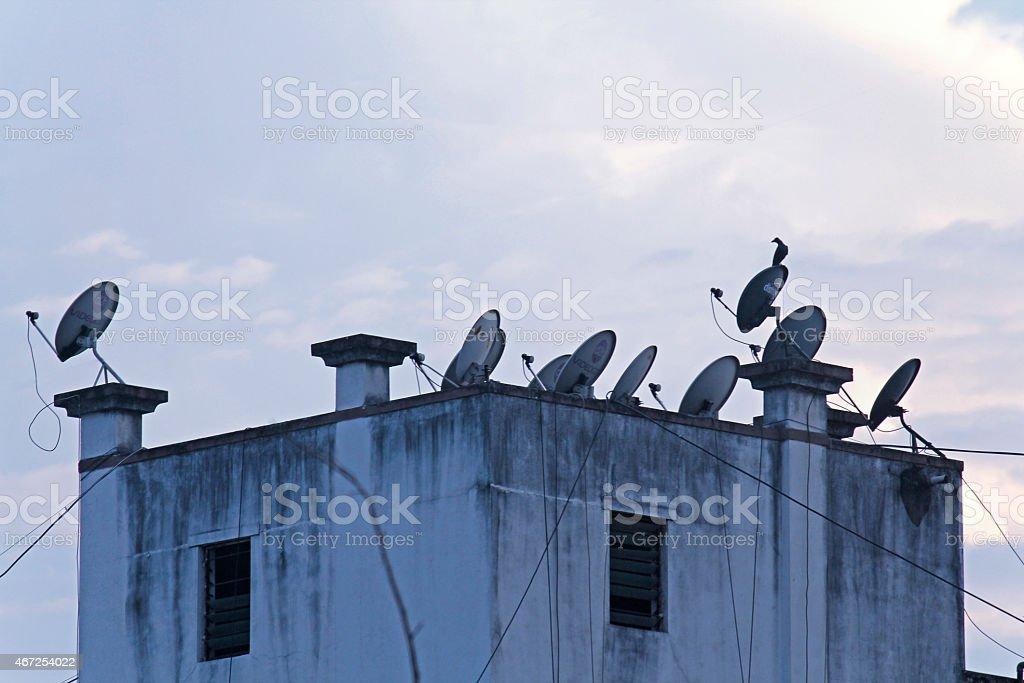Dish antennas stock photo
