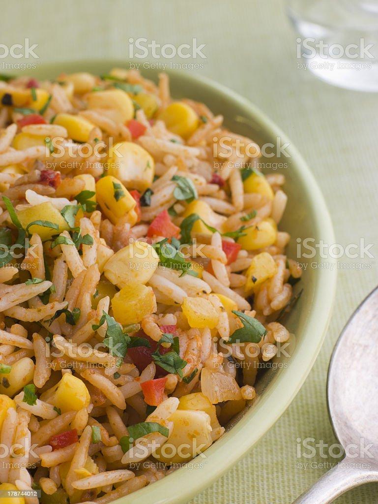 Dish of Jambalaya royalty-free stock photo