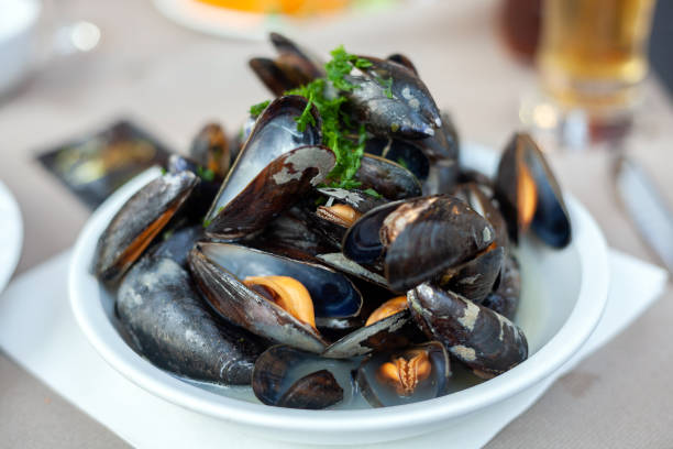 Dish with freshly prepared mussels Schaal met vers bereide mosselen mussel stock pictures, royalty-free photos & images