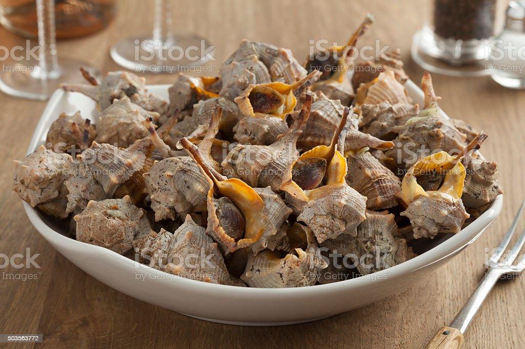Dish with Italian spiny dye-murex stock photo