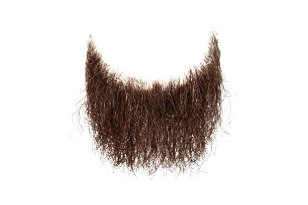 갈색 수염 흰색 배경에 고립 된 부조화 - 턱수염 뉴스 사진 이미지