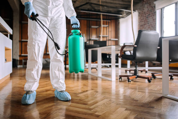 Disinfecting office during corona virus pandemic stock photo