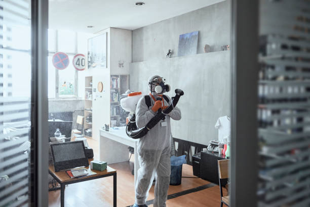 Disinfecting office work space stock photo