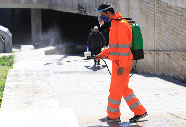 Disinfection, spraying and decontamination on a public place as a prevention against Coronavirus disease 2019, COVID-19 stock photo