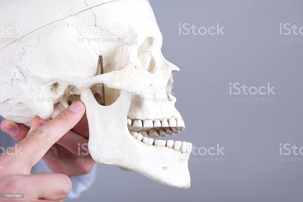 dislocated temporomandibular gemeinsame Lizenzfreies stock-foto