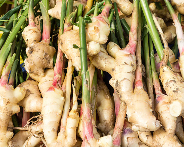 display of fresh ginger root - ginger stock photos and pictures