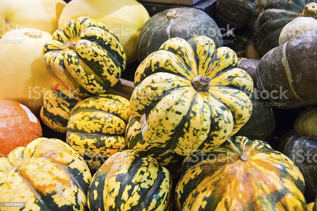 Display of fresh vegetables - Squash, Pumpkin stock photo