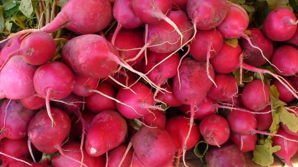 anzeige von rosa rettich auf dem griechischen markt - radieschen salat stock-fotos und bilder