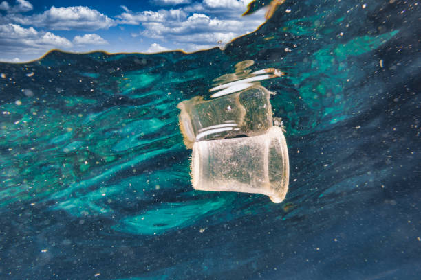 Disposable plastic cup floating in the sea ocean garbage patch stock photo