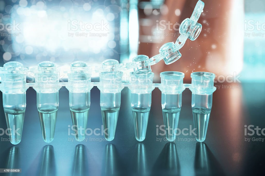 Disposable plastic tubes for DNA analysis stock photo