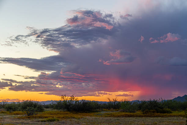 Distant rain in the Sonoran Desert of Arizona during sunset stock photo