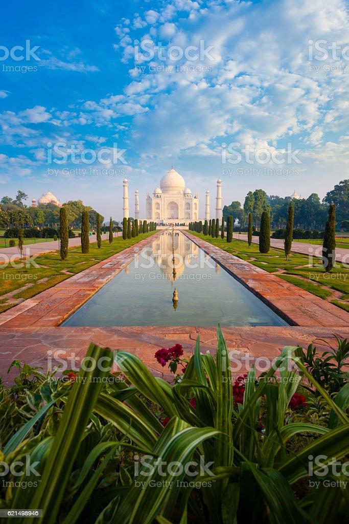 Distant Taj Mahal Reflection Fountain Flowers Lizenzfreies stock-foto