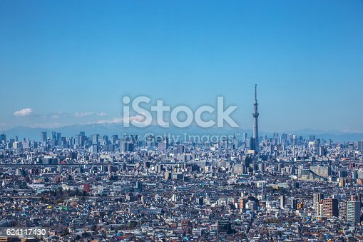 1184122904 istock photo Distant view of Tokyo in Japan 624117430