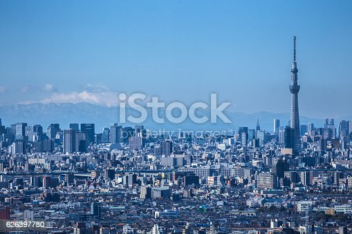 1184122904 istock photo Distant view of Tokyo in Japan 626397780