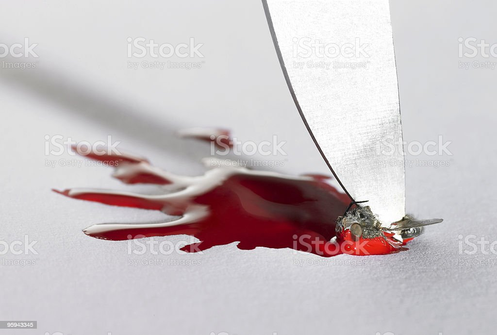 distend kill of a fly royalty-free stock photo