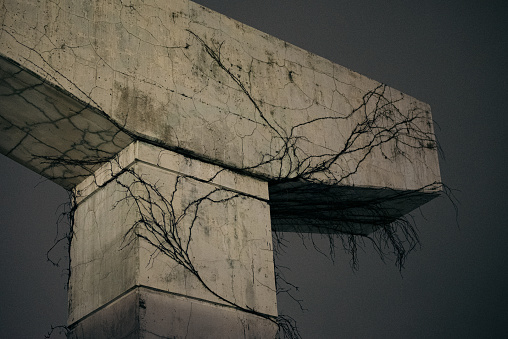 Disused former concrete support column for Gardiner Expressway in Toronto covered with cracks and vines.