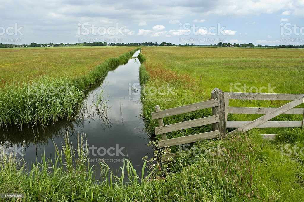 Ditch and Grass royalty-free stock photo