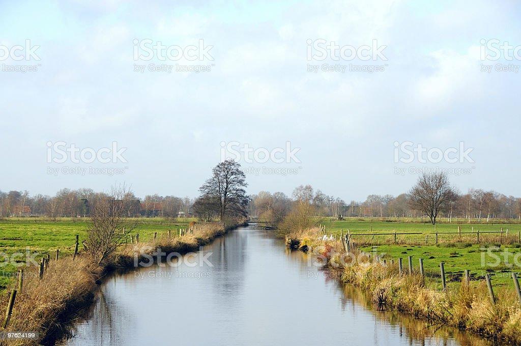 Ditch in autumn sunlight royaltyfri bildbanksbilder