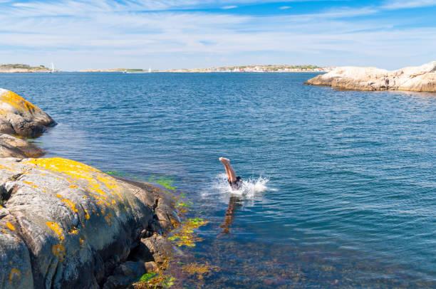 dive - bohuslän nature bildbanksfoton och bilder