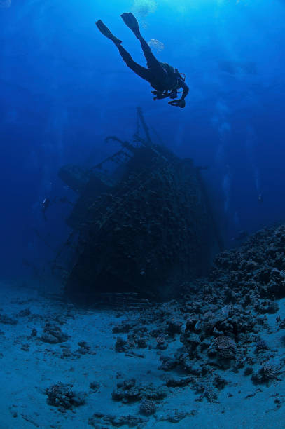 diver and ghiannis d shipwreck, africa, red sea, egypt - artificial reef stock pictures, royalty-free photos & images