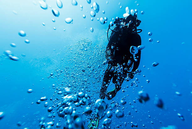 Diver Between Bubbles into the Depths in Bora Bora A DSLR underwater photo of a diver swimming between bubbles in the blue sea if Bora Bora, French Polynesia. The camera is aiming up at the surface and the diver is silhouetted against the bright light coming from above. The water is crispy clear blue. indo pacific ocean stock pictures, royalty-free photos & images