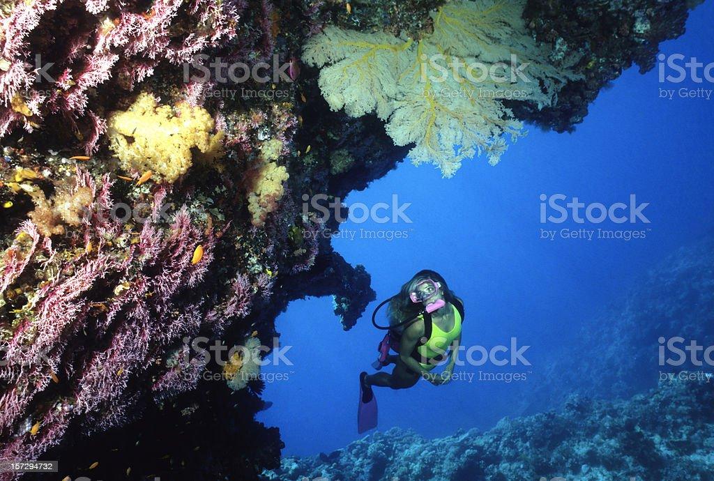 Diver Exploring Coral Cave. Australia stock photo