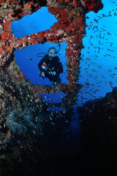 diver exploring ss yongala shipwreck, townsville, great barrier reef, australia - wreck of the ss yongala stock pictures, royalty-free photos & images
