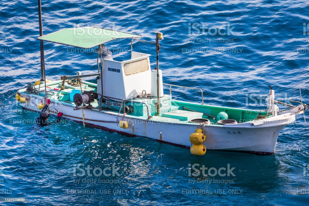 Diver Harvesting Sea Urchins, Sea of Japan stock photo