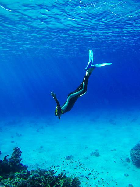 taucher in tief blau meer - freitauchen stock-fotos und bilder