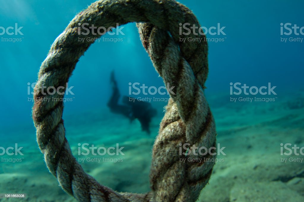 Diver in the rope stock photo