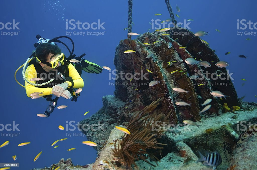 Diver inspects wreck royalty-free stock photo