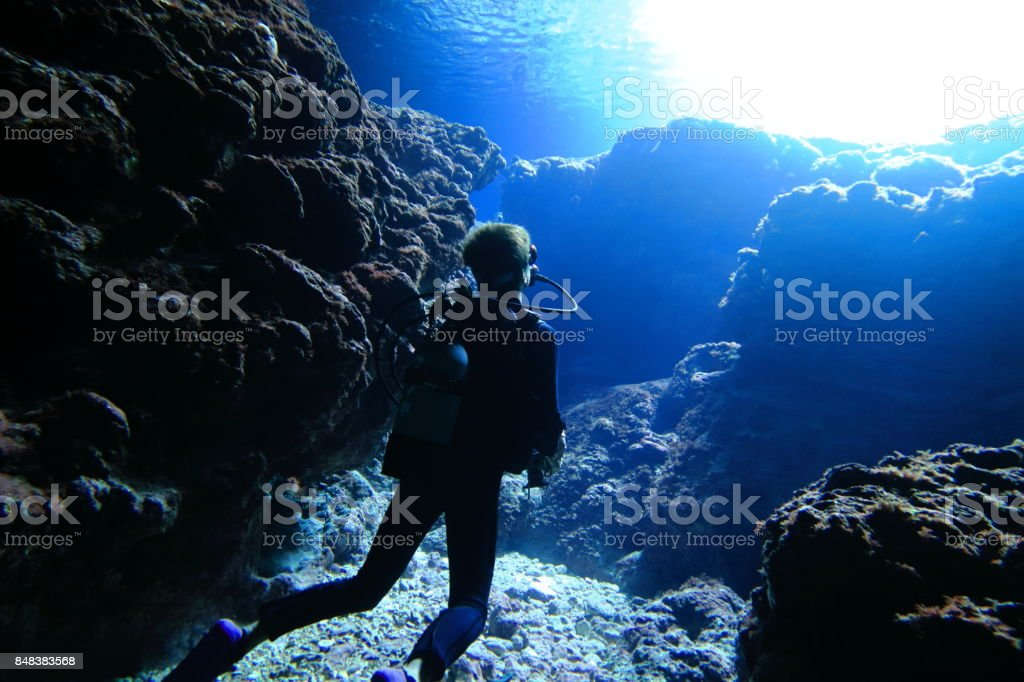 Diver looking up to the sea level stock photo