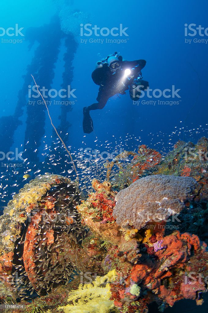 Diver on the Nippo Maru stock photo