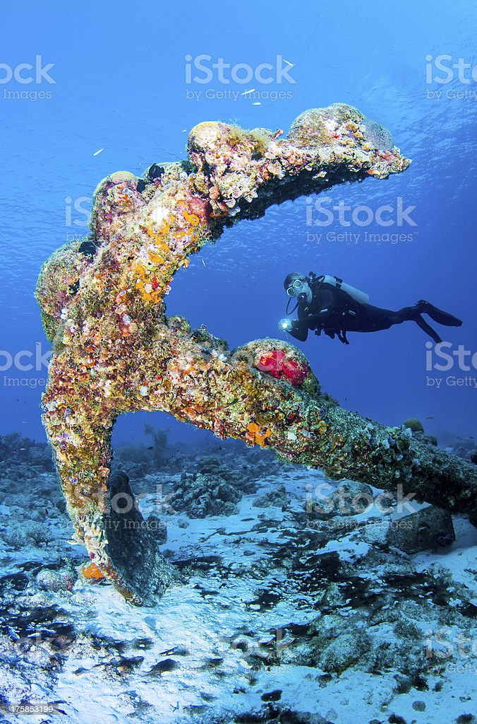 Diver over old spanish anchor incrusted with sponges stock photo