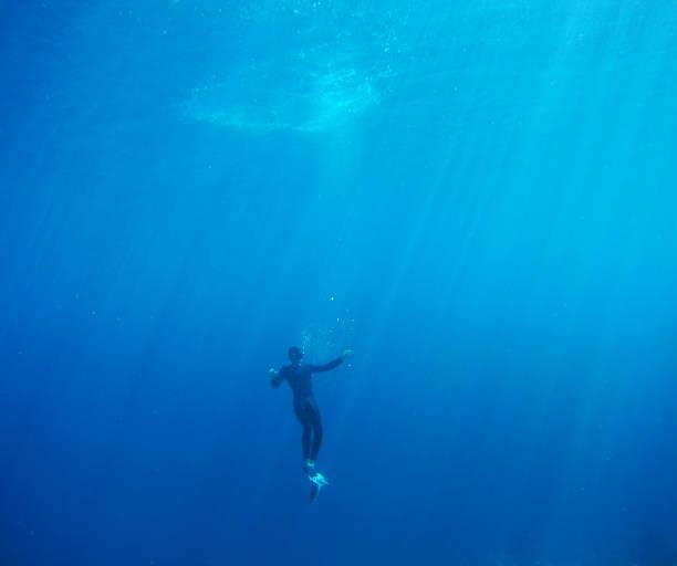 diver - freitauchen stock-fotos und bilder