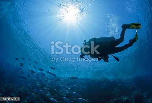 istock Diver swims in a Red Sea 512617924