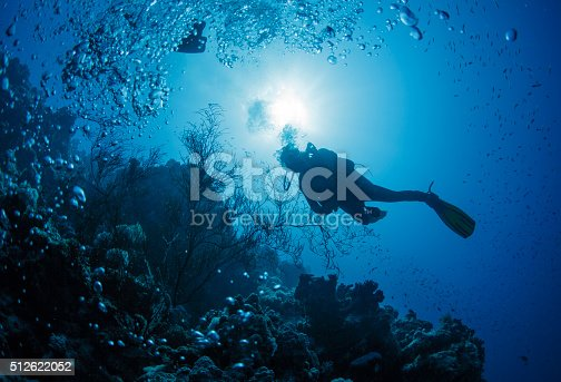 1037450870 istock photo Diver swims in a Red Sea 512622052