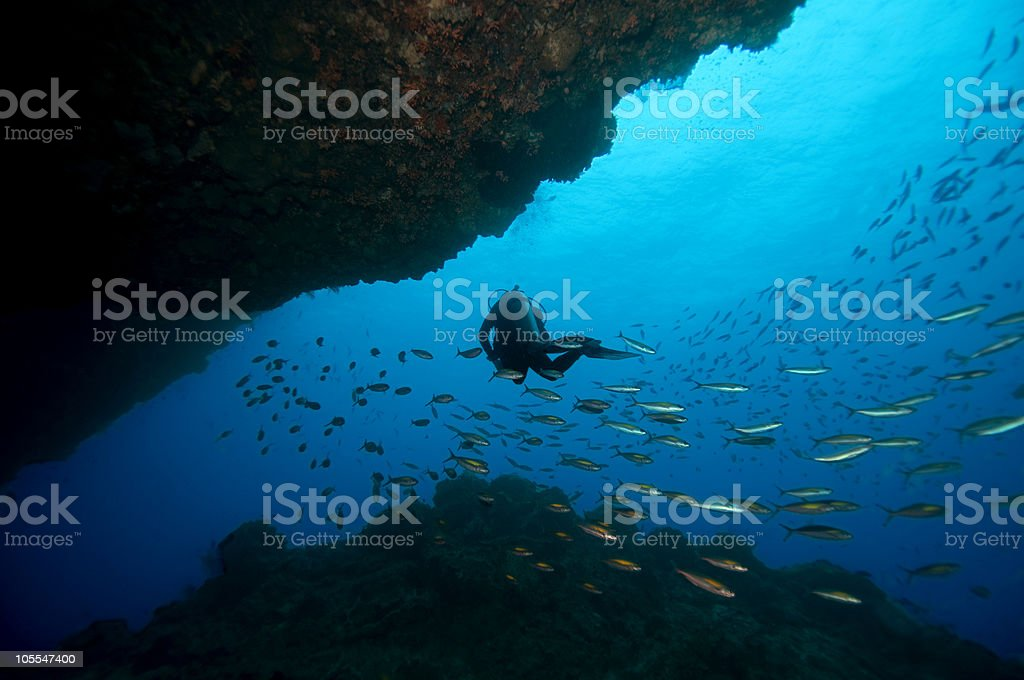 Diver Under Coral Overhang stock photo
