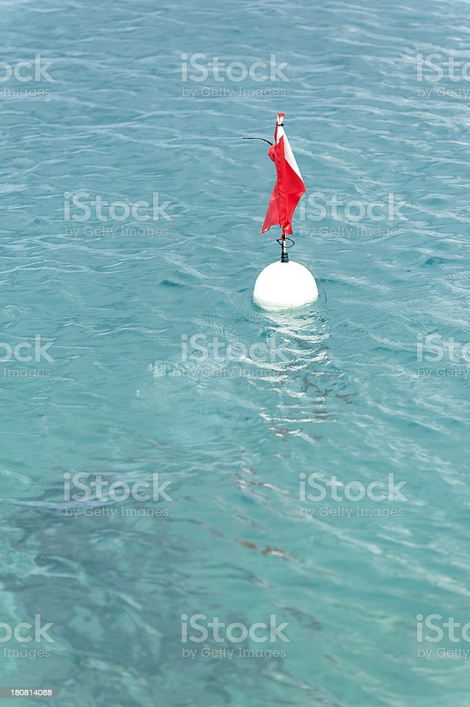 diver underneath a buoy in the caribean stock photo