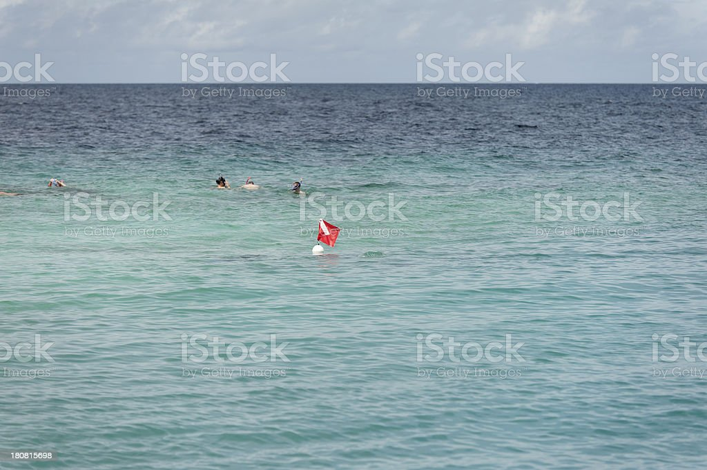 diver underneath a buoy in the caribean royalty-free stock photo