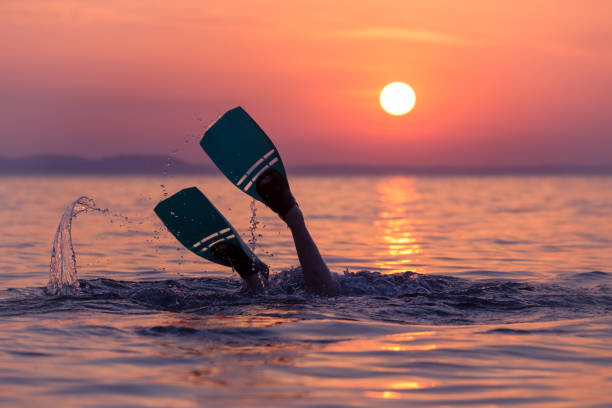 Diver with flippers at sunset over sea Close up of scuba diver feet with snorkel fins start diving at sunset diving flipper stock pictures, royalty-free photos & images