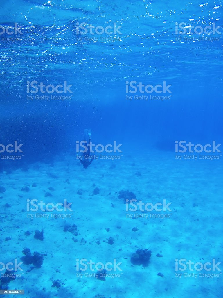 Divers in Deep Blue Sea. Go pro camera shot