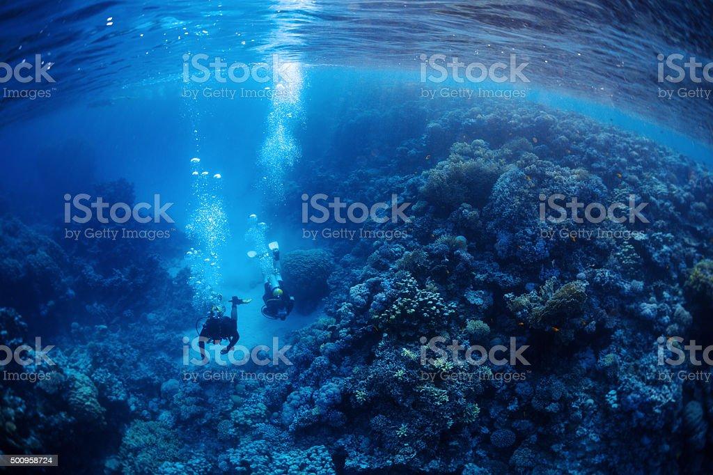 Divers underwater stock photo