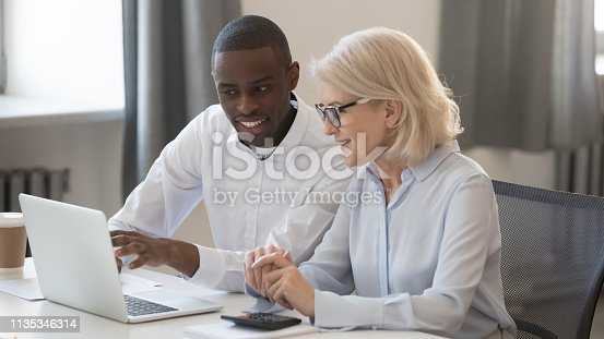 istock Diverse businessman and businesswoman accountants working together on pc 1135346314