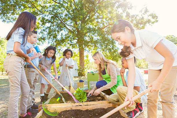 diversos elementar de trabalho da turma no jardim - teacher school solo imagens e fotografias de stock