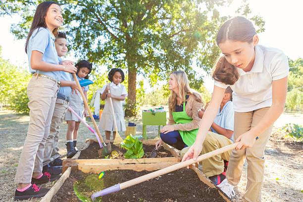 diversos alunos elementares plantação produtos hortícolas no jardim durante a viagem de campo - teacher school solo imagens e fotografias de stock