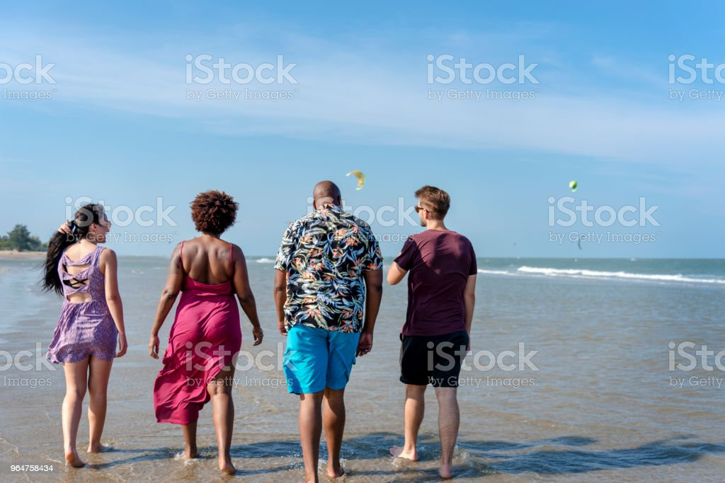 Diverse friends having fun at the beach royalty-free stock photo