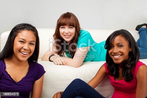 istock Diverse Group of Teenage Girls 186834373