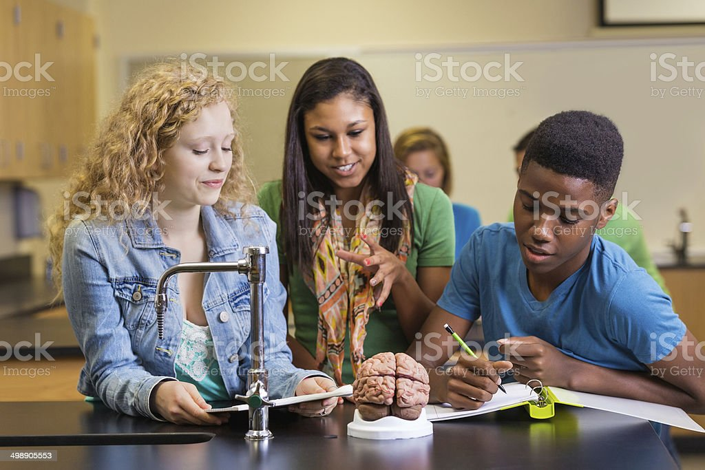 Diverse high school classmates working on science project together royalty-free stock photo